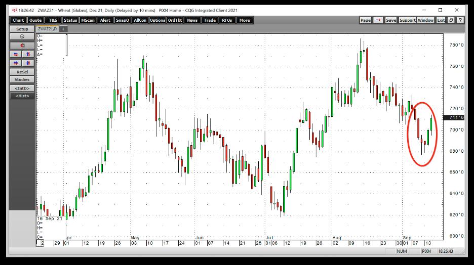 小麦期货日线图,来源:CQG