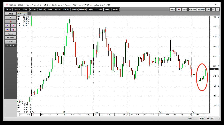 玉米期货日线图,来源:CQG